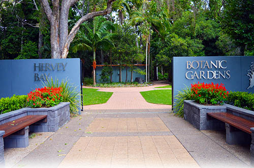Visit the Hervey Bay Botanic Gardens