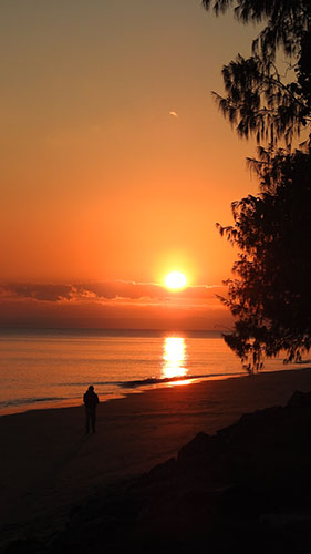 Sunrise Shelly Beach